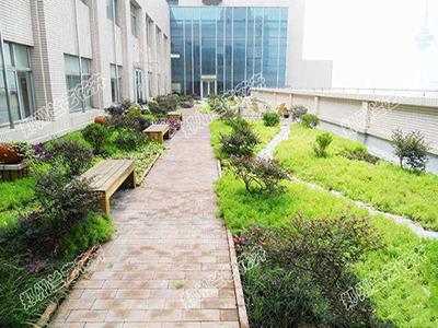 庭院绿化案例4.jpg